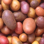 Potatoes of Every Color